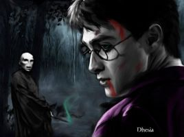Harry vs Voldemort by Dhesia