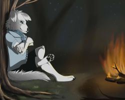 At a fire by Shesterrni