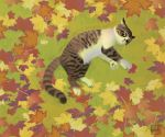 Autumn Cat by Wolfberry-J
