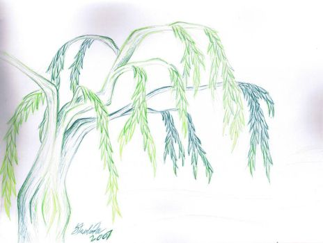 Green Willow by SheWulph