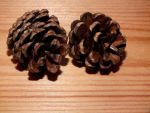 Two Cones by Clangston
