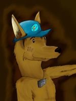 Brown el dingo by Nicocoloco500
