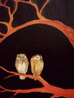 Owls by Reenin