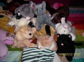 Pikachu with stuffed animals by kittylover4life65