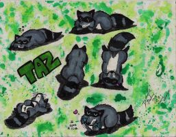 Taz for TrayLe by Senwolf10
