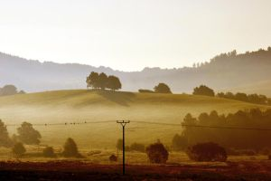 The late summer by tomsumartin