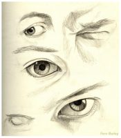 Eye Study by Ferntree