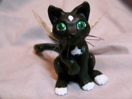 black halloween fairy cat by AmandaKathryn