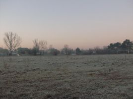 frosty morning 4 by indeed-stock