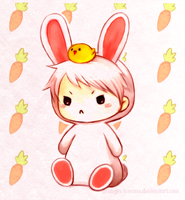 bunny prussia by oranges-lemons