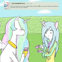 Question 1 by AskTheDukeOfUnicorns