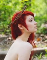 Crown of thorns by LaVengeanceSucree
