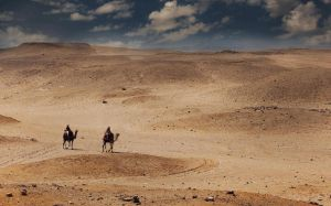 Desert Travel by davidsant