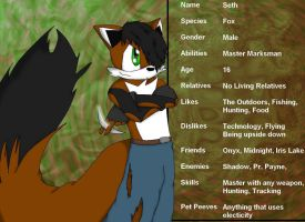 Seth the Fox Bio by OnyxTheCat