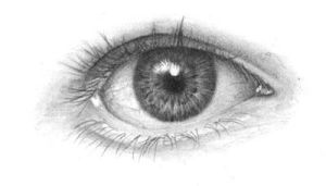 Drawing the human eye tutorial by chandito
