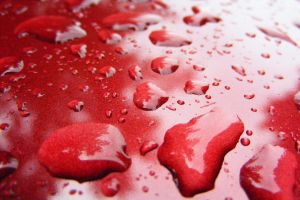 Red Wet by StellaHase