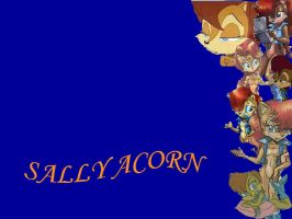 Sally Wallpaper by sally-acorn-fans