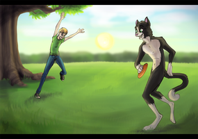 Summer Frisbee by Tsebresos