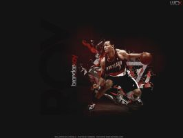 Brandon Roy by Cotovelo