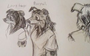 different hair styles by Colliequest