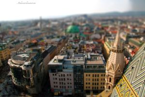 Vienna from Above by maikarant