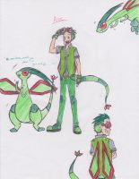 Ace The Flygon by Miss-Minimeal