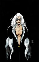 Black Cat by scottcouper