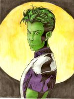 Beast Boy by greeenDudE