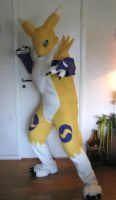my Renamon Fursuit Cosplay by inicka
