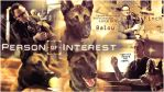Balou And Finch Person of interest by Anthony258