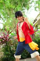 One Piece, Monkey D. Luffy: Strawhat Pirates by cure-pain