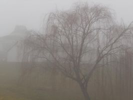 Weeping Willow by CrazyLittleZebra