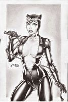 CATWOMAN SEXXXY !!! by carlosbragaART80