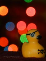 bad ass bokeh duck by wroquephotography
