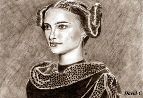 Padme Portrait by David-c2011