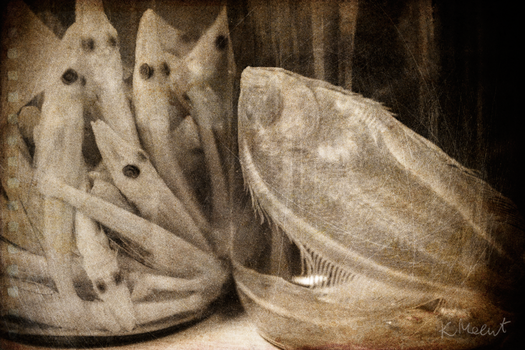 creepy jars by akne5