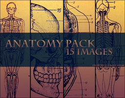 Anatomy Pack by zielony-kociak