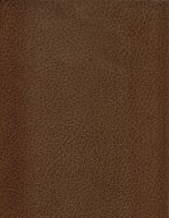 Textured Paper 41 by purpledragon42-stock