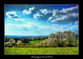 Spring in my Village by zozzy1980