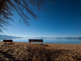 Peaceful Fall by MartinGollery
