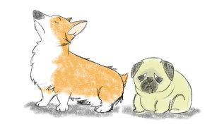 Corgis are mean to pugs by ezeqquiel