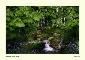 Cornish Holy Well by ArwensGrace