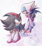 Shadow and Rouge by riku-dou