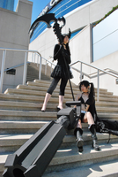 BRS + DM by Rinotou