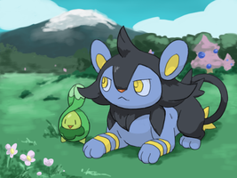 Luxio and Budew