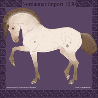 1030 Group Horse Import by Cloudrunner64