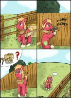 Fences by CIRILIKO