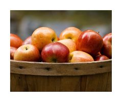 Apples by rscorp