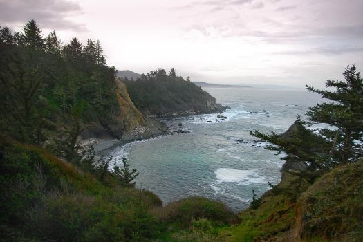 Coast of Coos Bay by revolution-man