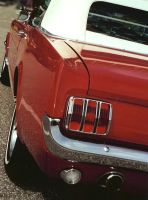 mustang sally by peaceocake